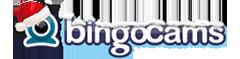 bingocams_christmas_logo